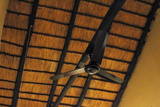 Timbavati Safari Lodge: solo ventilador. No hay A/A
