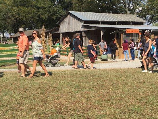 Smyrna, TN: Walden Pumpkin Farm