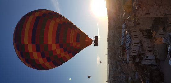 Royal Balloon: 20171012_071706_large.jpg
