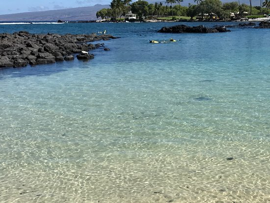 Fairmont Orchid Hawaii Private Beach Area Cool Clear Refreshing Water But Bring