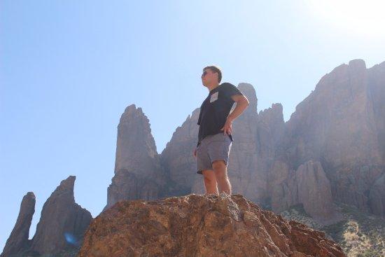 Apache Junction, AZ: The Bear !