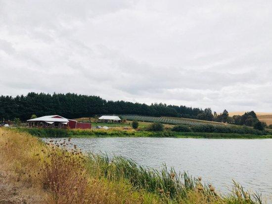 Cornelius, OR: Seasonal Farm store, lake and outside deck