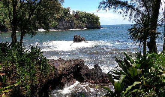Papaikou, Hawái: IMG_20171013_094044_large.jpg
