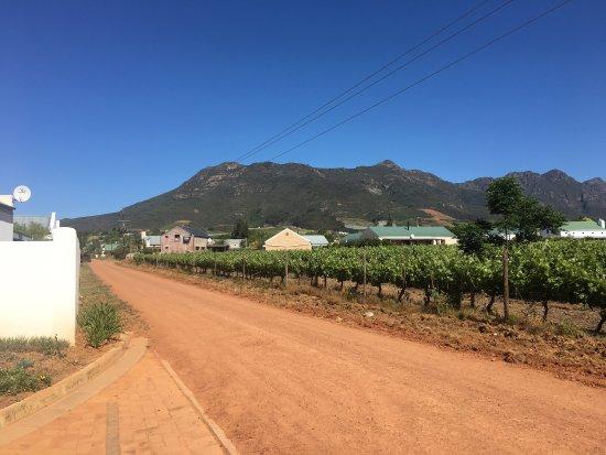 Riebeek Kasteel, South Africa: photo5.jpg