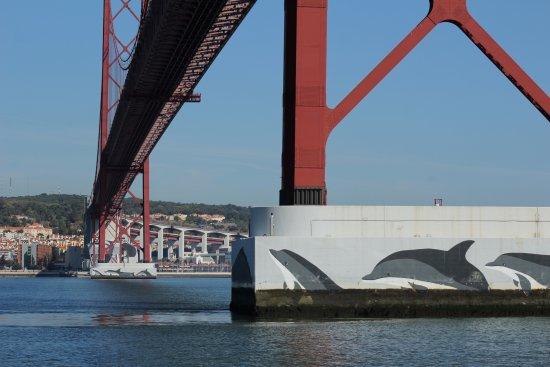 Vasco da Gama Bridge : Embaixo da ponte