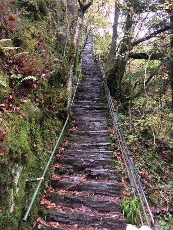 Devil's Bridge Falls: photo1.jpg
