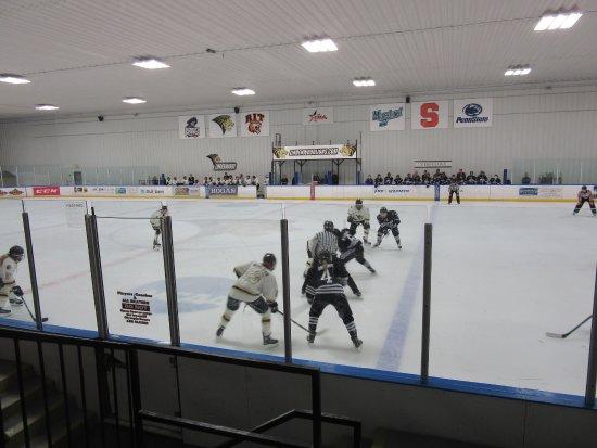 Wentzville, MO: Lindenwood Ice Arena-Women's Hockey Team Action