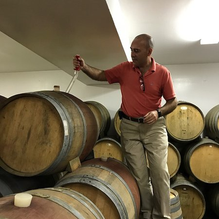 Greenport, NY: Piping wine from barrel for tasting