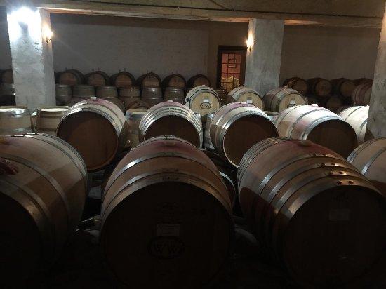 Williamsburg Winery : 37739_large.jpg