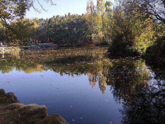 Las presillas piscinas naturales de rascafria aktuelle for Piscinas naturales las presillas