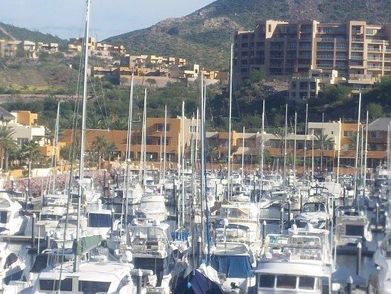 CostaBaja Resort & Spa: Inner harbor and businesses