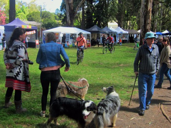 Emerald, Australia: Dogs on lead friendly - bring your bike