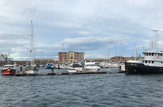 Hartlepool is a diamond in the rough of the north. It is steeped in maritime history. Everywhere