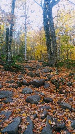 Coaticook, Kanada: The Trail