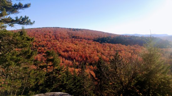 Coaticook, Kanada: The Trail - View from Trail 4