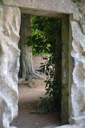 Blarney Castle & Gardens: Jardins du Château de Blarney