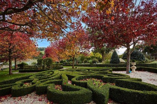 Arthurs Seat, Австралия: Beautiful gardens, sculpture and art