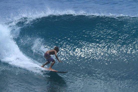 SurfYoga