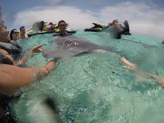 Papetoai, Franska Polynesien: photo2.jpg