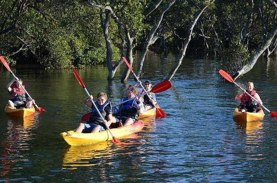 Kayak and SUP Guided Tours