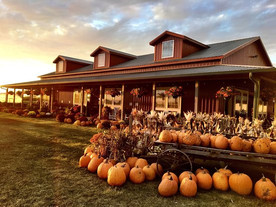 Donnellson, IA: Harvestville Farm