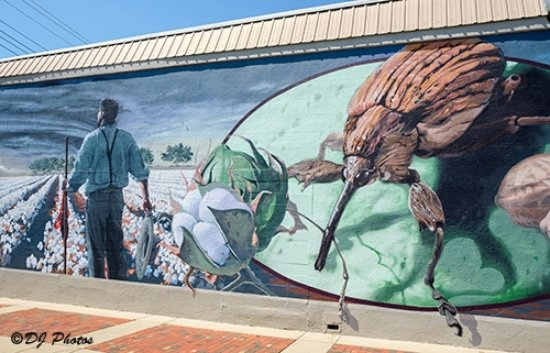 Boll Weevil Monument: Mural on Adjacent Building (detail)