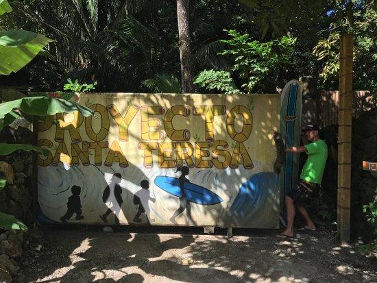 The Jungle House: photo6.jpg