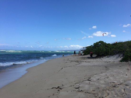 Waialua, HI: photo8.jpg