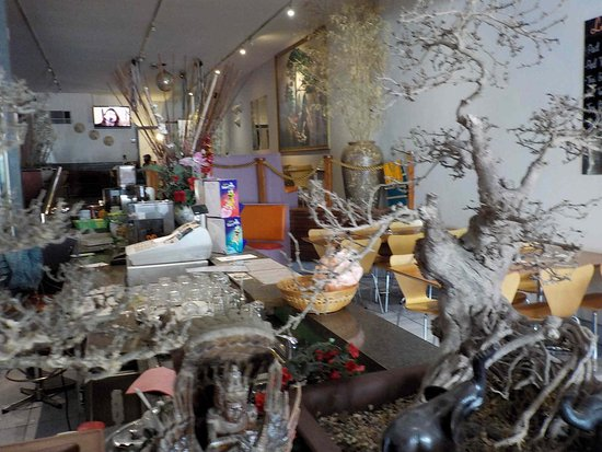 A Touch of Thai Noodle Bar: Counter (through foliage)