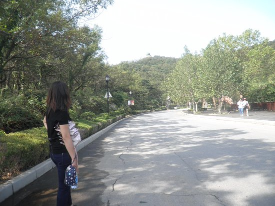 Haizhiyun Park: 下って見えますが…。実は登坂なんです。