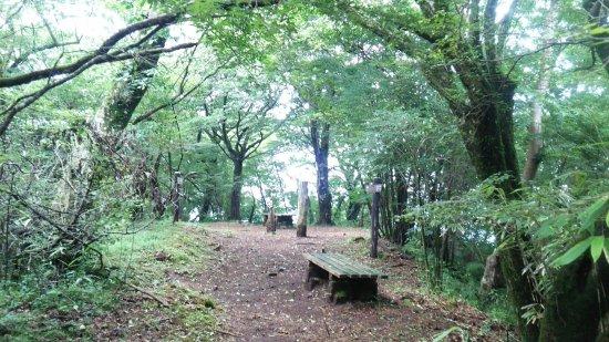 Mt. Mikuni (Kanagawa, Yamanashi, Shizuoka)