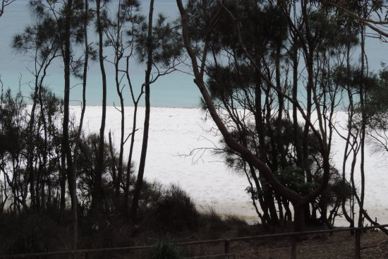 Booderee National Park : Superbe plage de sable blanc