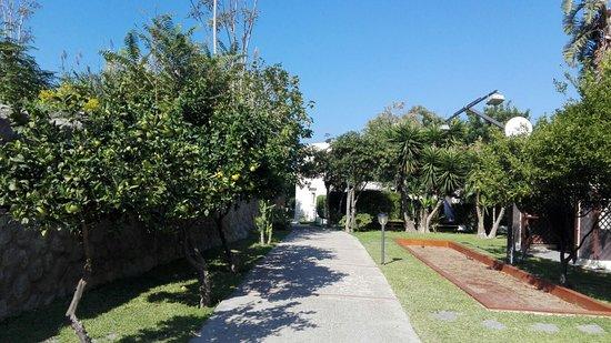 Casa Vacanze Parco del Generale: IMG-20171014-WA0043_large.jpg