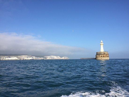 Dover Sea Safari : photo4.jpg