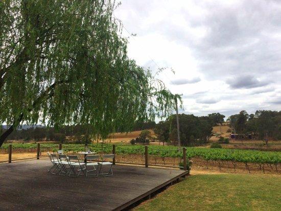 Pokolbin, Australia: patio con vista sulle vigne