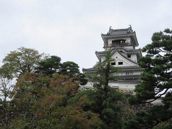 Kochi Castle: 天守閣