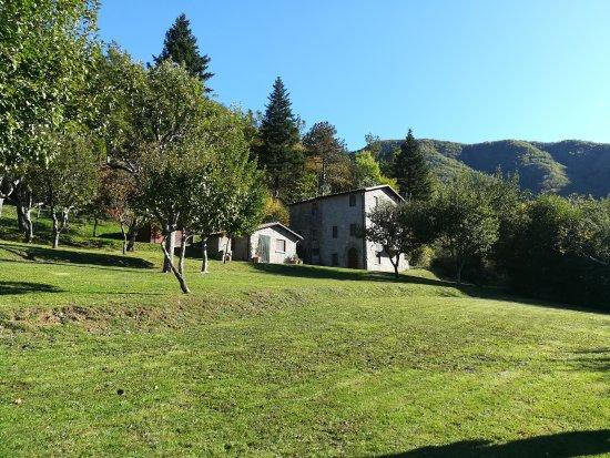 Gallicano, Italien: La Radice