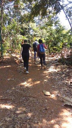 Morogoro, Tanzanya: Hiking in Udzungwa!