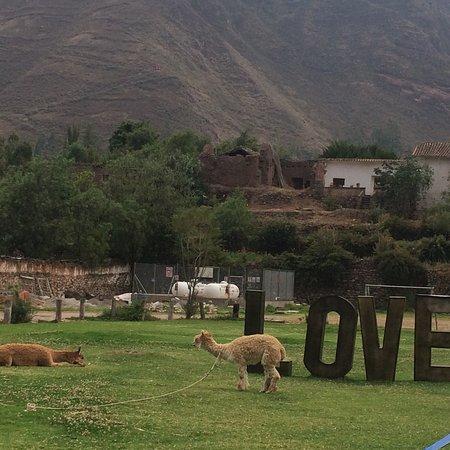 Yucay, Peru: photo5.jpg