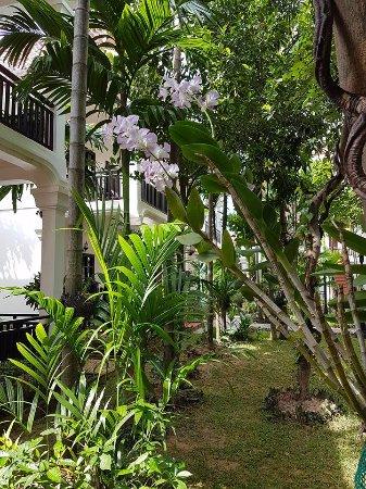 Foto de Sonalong Boutique Village & Resort
