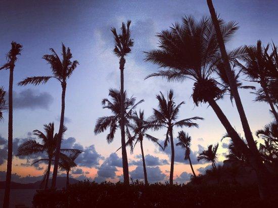 Beach Club: photo5.jpg