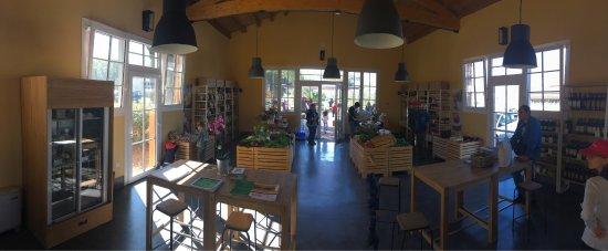 Pomarance, Italia: Nuovissimo bio shop all'interno dell'agriturismo, inaugurato ad ottobre 2017.