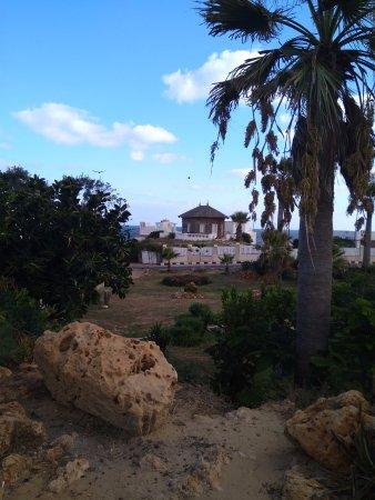 King Farouk Palace: Парк возле резиденции