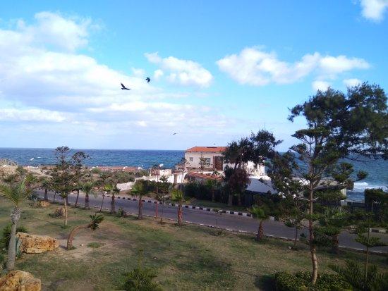 King Farouk Palace: Вид на море с парка