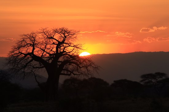 Tarangire National Park, تنزانيا: Our first African sunset in Tarangire national park