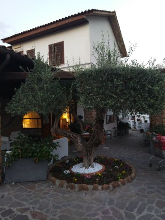 Park Hotel Serenissima : IMG_20171012_183546_large.jpg