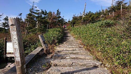 Hachimandaira Promenade Peak: 石段のところもあります