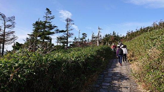 Hachimandaira Promenade Peak: 登り口