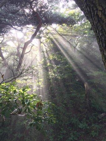 Geumgang Park: photo0.jpg
