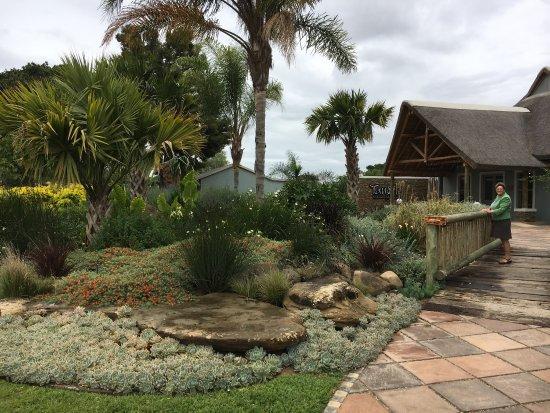 Addo, Afrika Selatan: photo3.jpg
